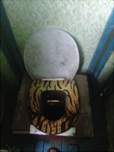 Toilettes sèches, toujours glam'