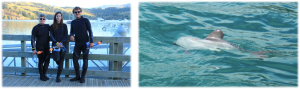 En tenue (classe) pour aller nager avec les dauphins d'Hector