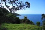 Nos premières vues néo-zélandaises
