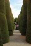 05 - Jouer dans un cimetière.JPG